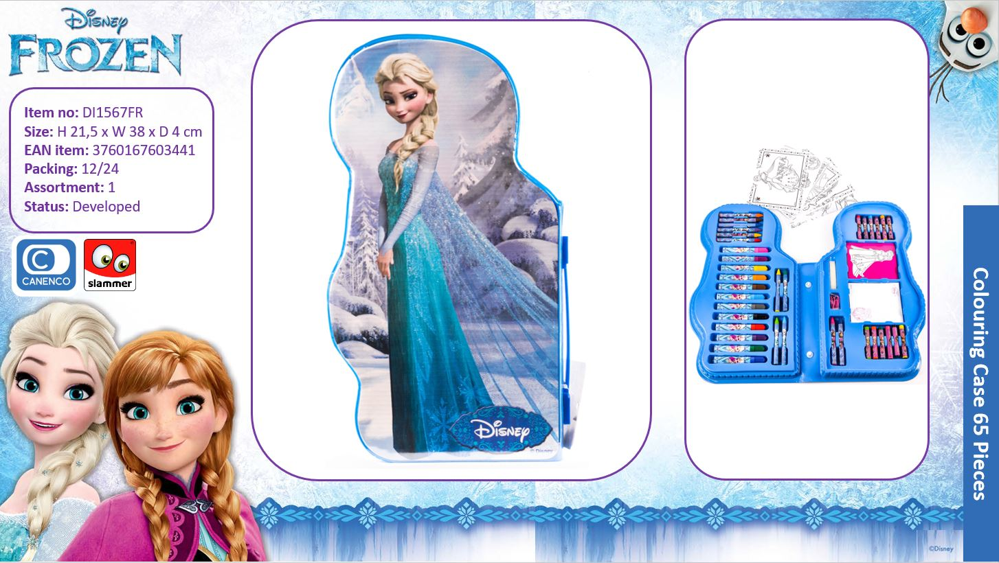 Disney Frozen Shaped Colouring Case